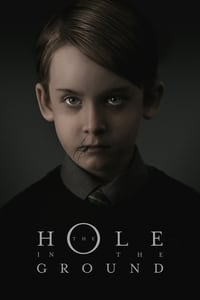 Nonton Film The Hole in the Ground (2019) Subtitle Indonesia Streaming Movie Download