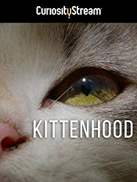 Nonton Film Kittenhood (2019) Subtitle Indonesia Streaming Movie Download